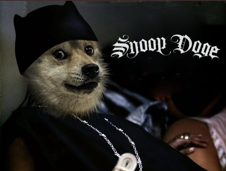 Dogecoin Rises More Than 36% After Snoop Dogg Becomes Snoop DOGE