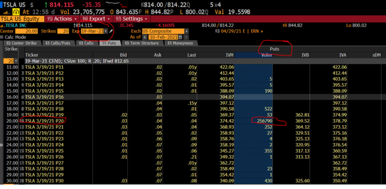 1M in Puts at 20.00 for TSLA???? Which one of you did this