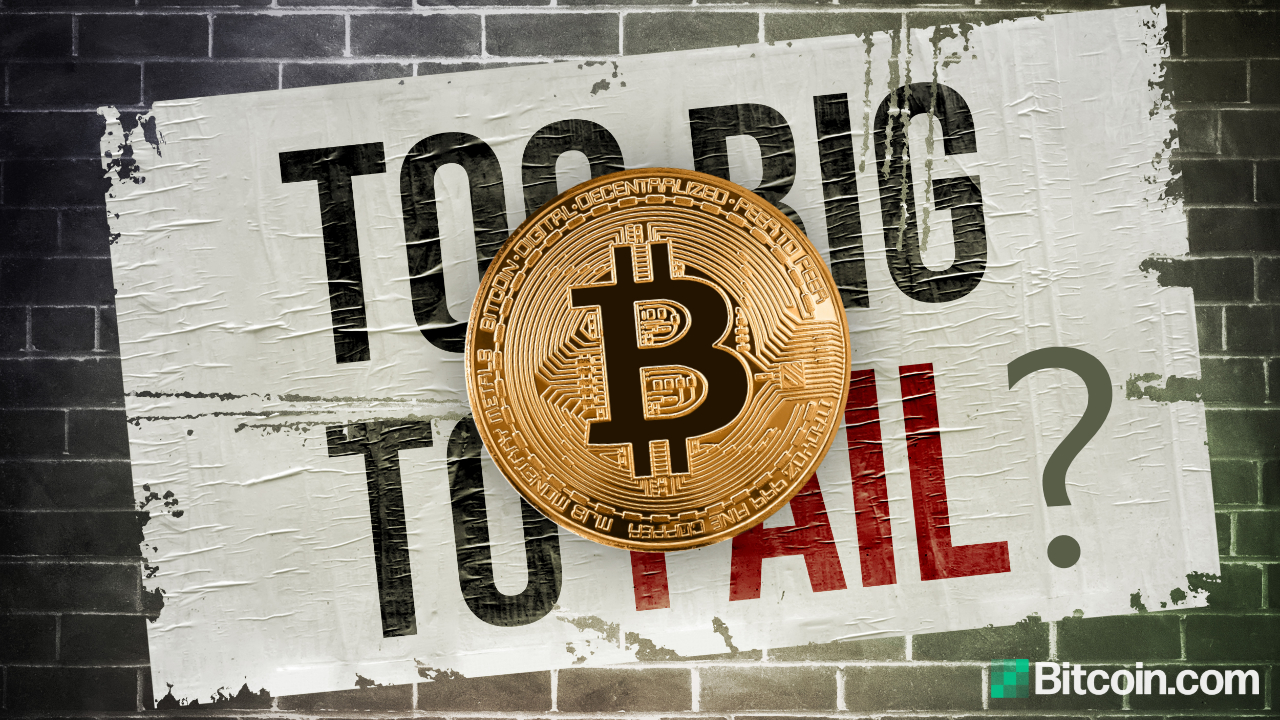 Economist Says Bitcoin Isn't Too Big to Fail — Warns BTC Can Only Establish Itself if Governments Allow It – Regulation Bitcoin News